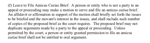 Appellate Division Amicus Rules
